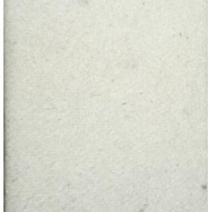 Filtervlies voor AquaForte Biofleece vliesfilter - 14 grams - Biofleece 300