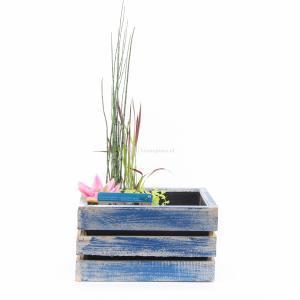 Mini vijver in houten kistje blauw
