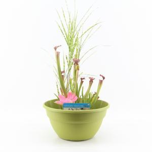 Mini vijver kunststof limegroen