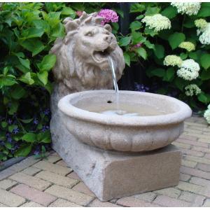 Dagaanbieding - Basel waterornament dagelijkse aanbiedingen