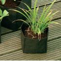 Waterplantzak vierkant 18 cm